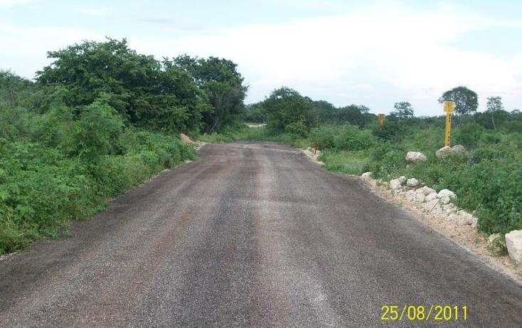 Foto de terreno habitacional en venta en  , tahdzibichén, mérida, yucatán, 456381 No. 15