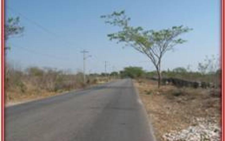 Foto de terreno habitacional en venta en  , tahdzibichén, mérida, yucatán, 456382 No. 05