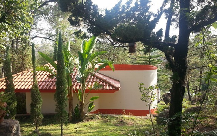 Foto de edificio en venta en  , tala centro, tala, jalisco, 2045679 No. 18