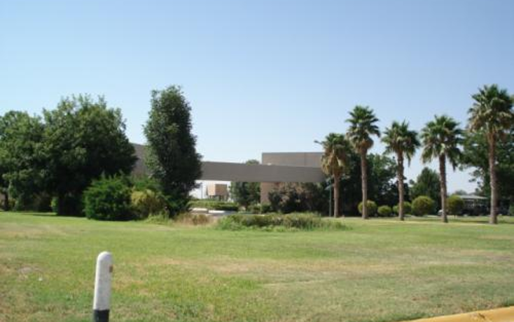 Foto de terreno habitacional en venta en  , taller los azulejos, torre?n, coahuila de zaragoza, 400972 No. 13