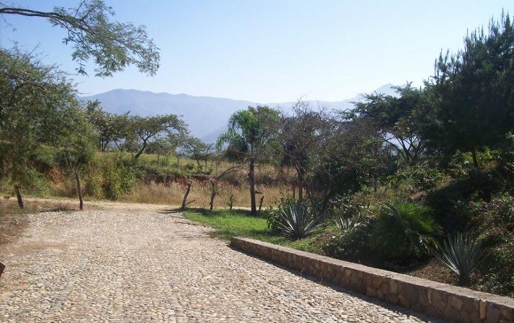 Foto de terreno habitacional en venta en  , talpa de allende centro, talpa de allende, jalisco, 1351811 No. 01