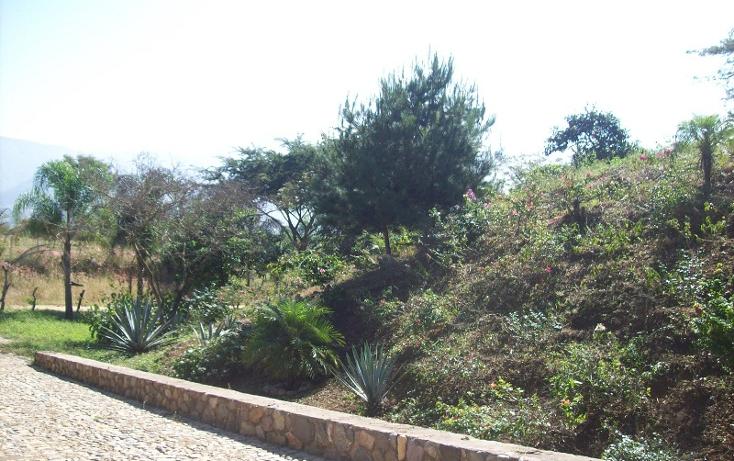 Foto de terreno habitacional en venta en  , talpa de allende centro, talpa de allende, jalisco, 1351811 No. 06