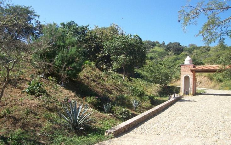 Foto de casa en venta en  , talpa de allende centro, talpa de allende, jalisco, 1351813 No. 13