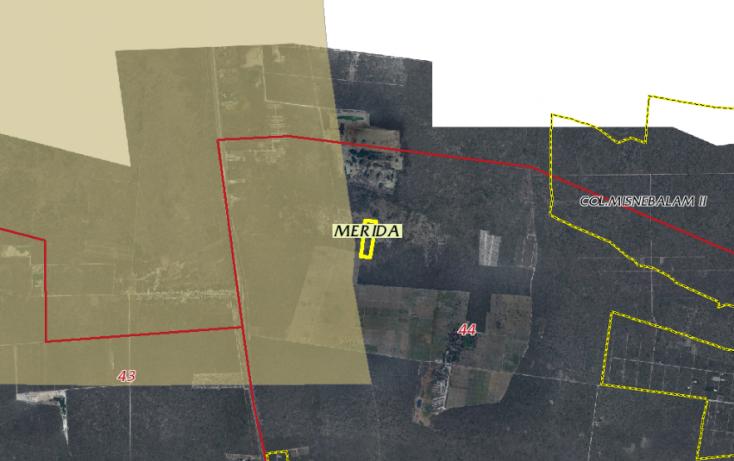 Foto de terreno habitacional en venta en, tamanché, mérida, yucatán, 1071183 no 07