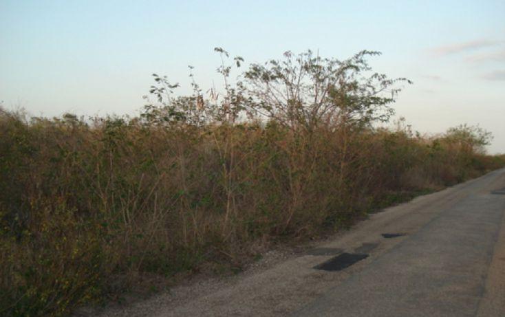 Foto de terreno habitacional en venta en, tamanché, mérida, yucatán, 1088511 no 01