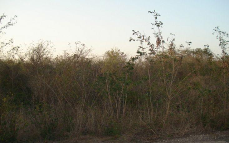 Foto de terreno habitacional en venta en, tamanché, mérida, yucatán, 1088511 no 02