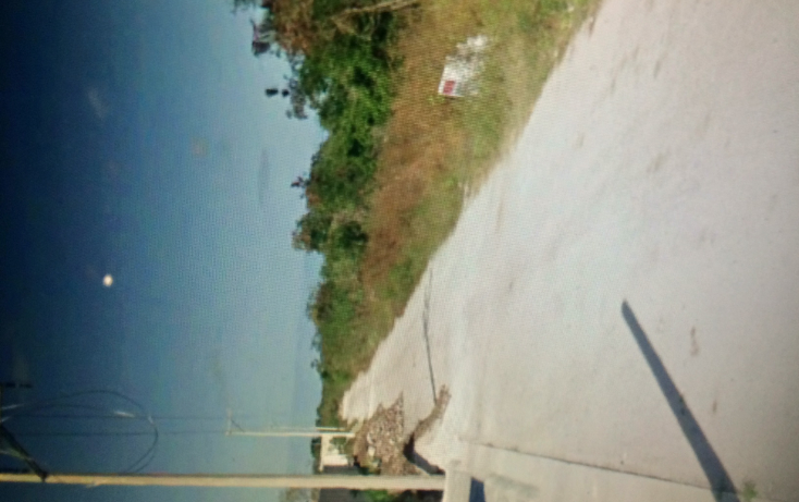 Foto de terreno habitacional en venta en  , tamanch?, m?rida, yucat?n, 1984018 No. 09