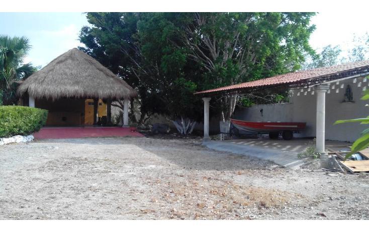 Foto de rancho en renta en  , tamanché, mérida, yucatán, 853657 No. 05