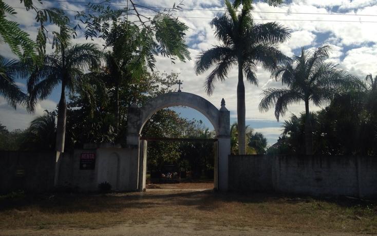 Foto de rancho en renta en  , tamanché, mérida, yucatán, 853657 No. 07