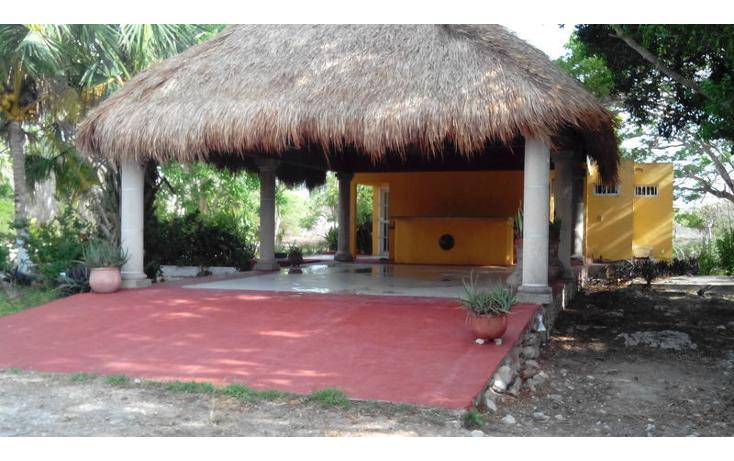 Foto de rancho en renta en  , tamanché, mérida, yucatán, 853657 No. 15