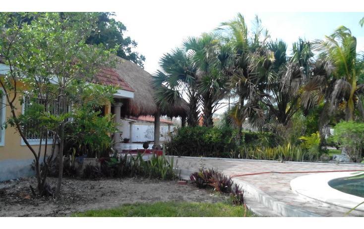 Foto de rancho en renta en  , tamanché, mérida, yucatán, 853657 No. 17