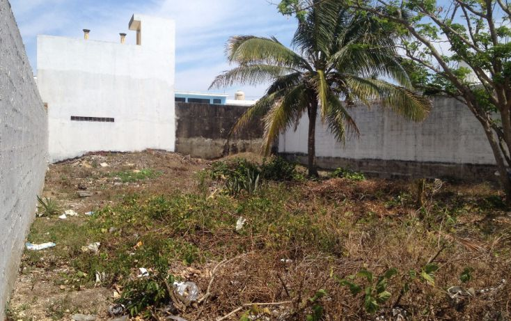 Foto de terreno habitacional en renta en tamaulipas 726, petrolera, coatzacoalcos, veracruz, 1800130 no 02