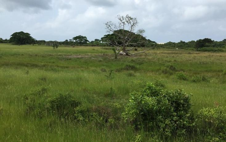 Foto de rancho en venta en  , tamiahua, tamiahua, veracruz de ignacio de la llave, 1861278 No. 03