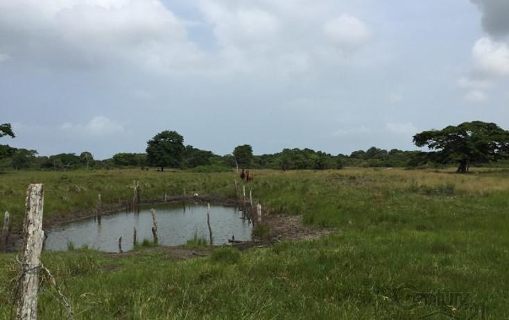 Foto de rancho en venta en  , tamiahua, tamiahua, veracruz de ignacio de la llave, 1861278 No. 04