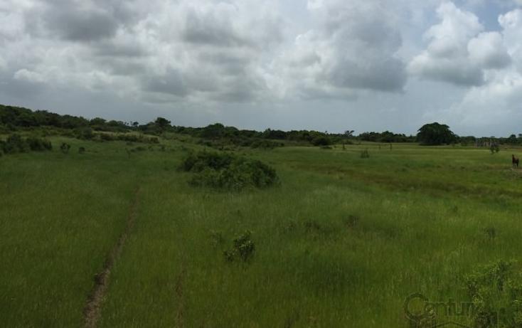 Foto de rancho en venta en  , tamiahua, tamiahua, veracruz de ignacio de la llave, 1861278 No. 05