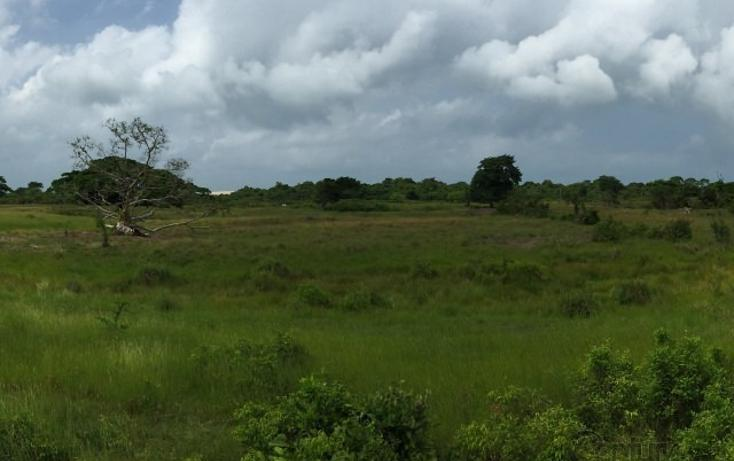 Foto de rancho en venta en  , tamiahua, tamiahua, veracruz de ignacio de la llave, 1861278 No. 06