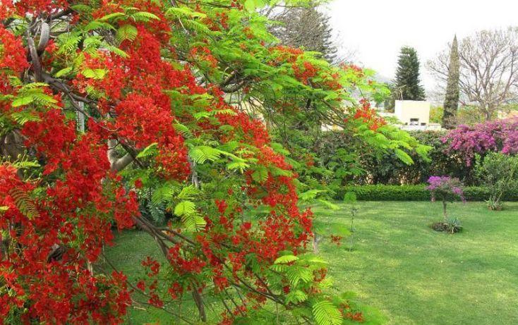 Foto de casa en venta en, tamoanchan, jiutepec, morelos, 1210425 no 29