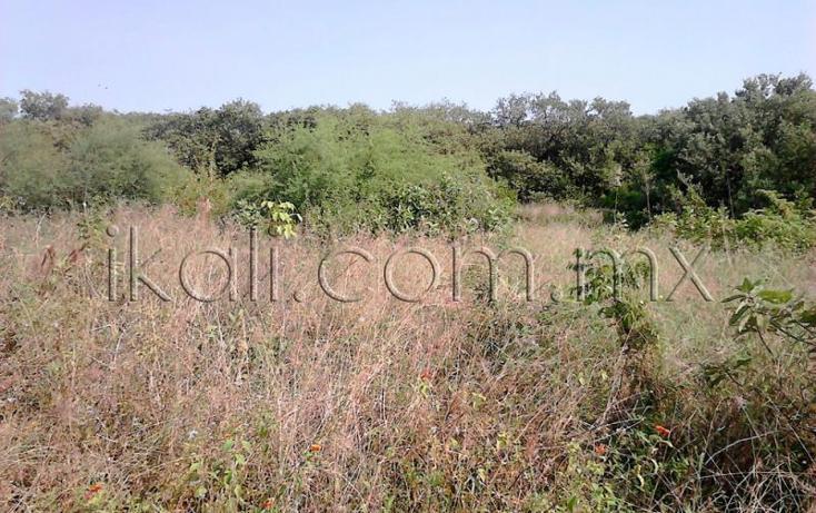 Foto de terreno habitacional en venta en  , tampamachoco, tuxpan, veracruz de ignacio de la llave, 1589312 No. 05