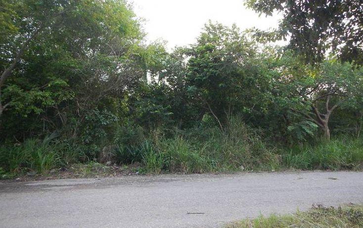 Foto de terreno habitacional en venta en, tampico alto centro, tampico alto, veracruz, 1673268 no 05