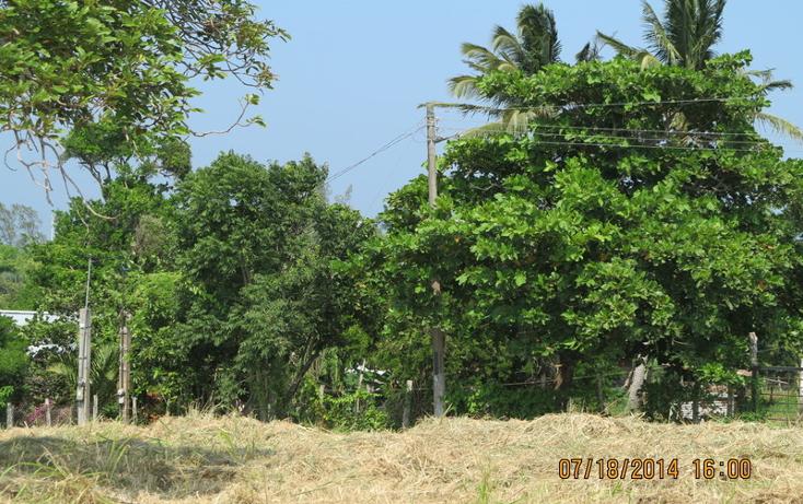 Foto de terreno habitacional en venta en  , tampico alto centro, tampico alto, veracruz de ignacio de la llave, 1051333 No. 02
