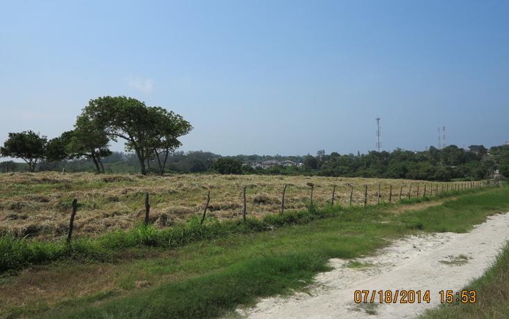 Foto de terreno habitacional en venta en  , tampico alto centro, tampico alto, veracruz de ignacio de la llave, 1051333 No. 10