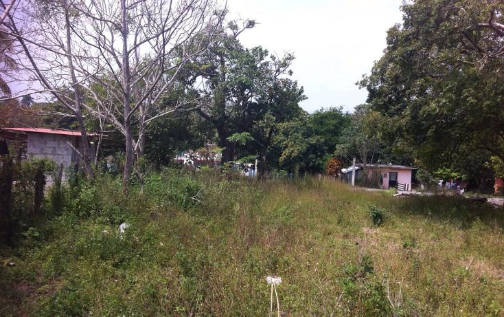 Foto de terreno habitacional en venta en  , tampico alto centro, tampico alto, veracruz de ignacio de la llave, 1188793 No. 04