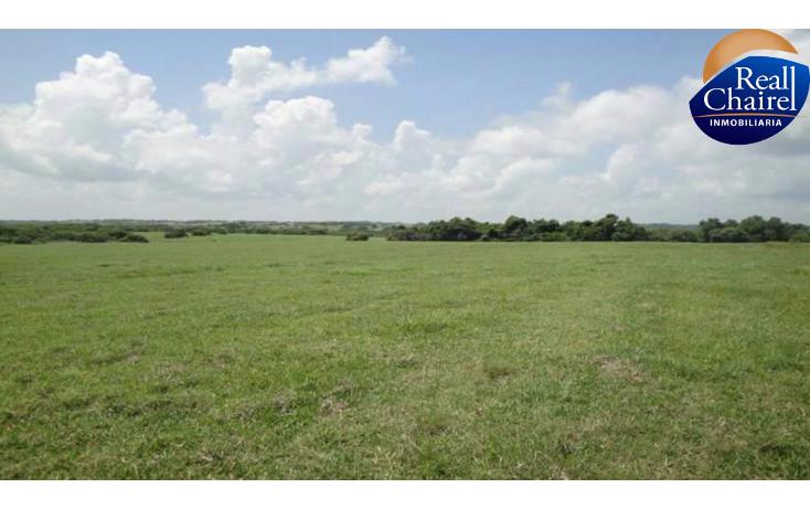 Foto de terreno habitacional en venta en  , tampico alto centro, tampico alto, veracruz de ignacio de la llave, 1444095 No. 03