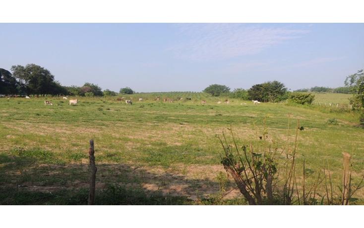 Foto de terreno comercial en venta en  , tampico alto centro, tampico alto, veracruz de ignacio de la llave, 1503267 No. 03