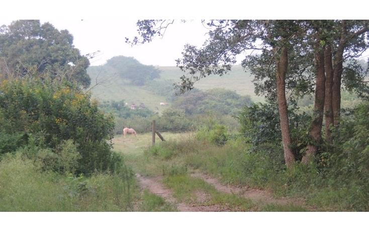 Foto de terreno comercial en venta en  , tampico alto centro, tampico alto, veracruz de ignacio de la llave, 1503267 No. 04