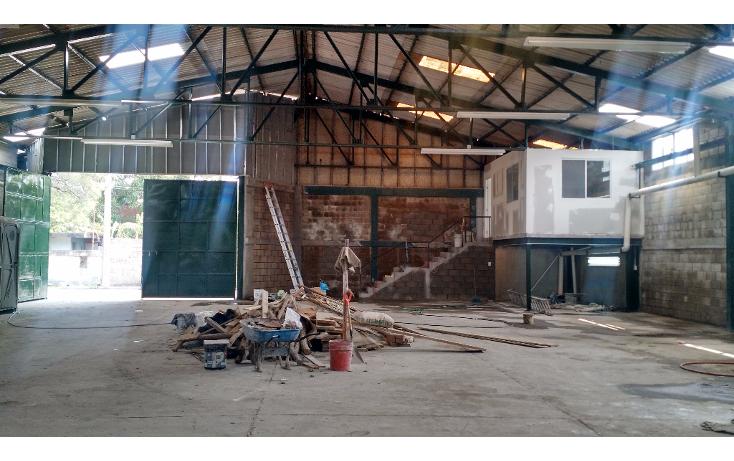 Foto de nave industrial en renta en  , tampico, tampico, tamaulipas, 2015236 No. 04