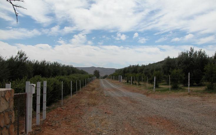 Foto de rancho en venta en  , tanama, tecate, baja california, 1247517 No. 02