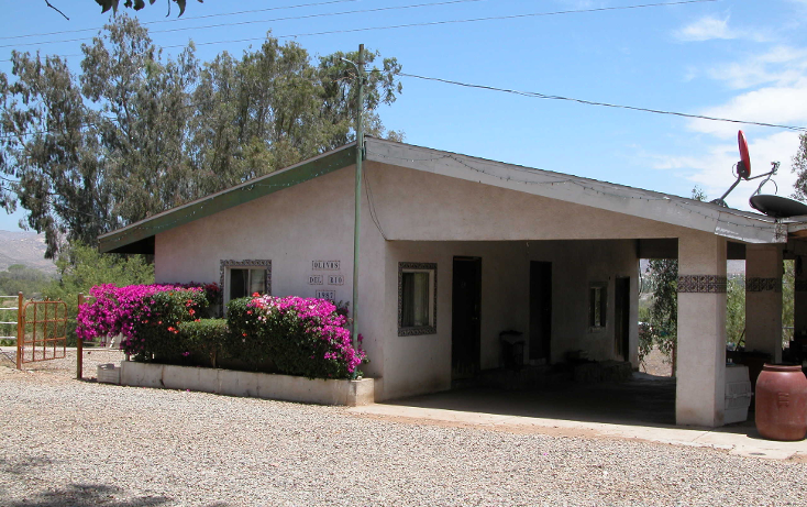 Foto de rancho en venta en  , tanama, tecate, baja california, 1247517 No. 06