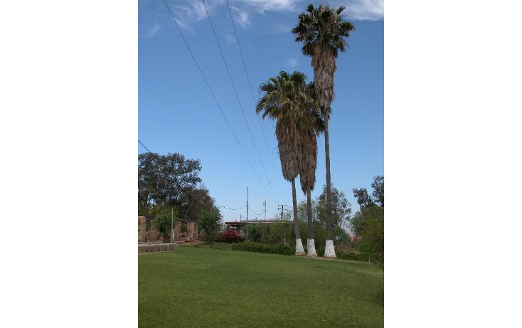 Foto de rancho en venta en  , tanama, tecate, baja california, 1247517 No. 11