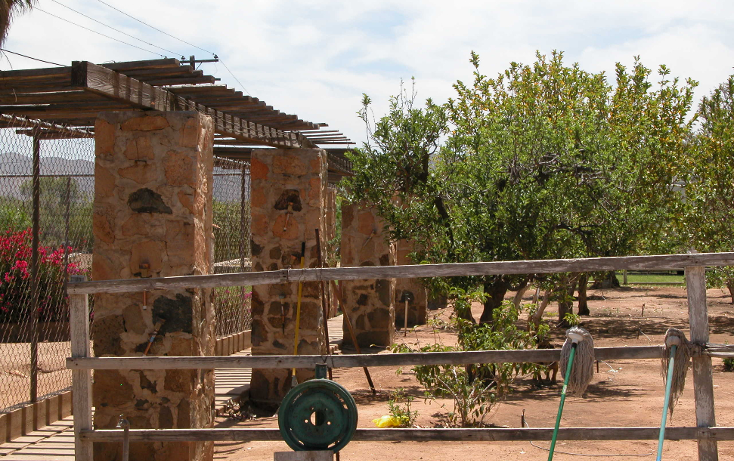 Foto de rancho en venta en  , tanama, tecate, baja california, 1247517 No. 12