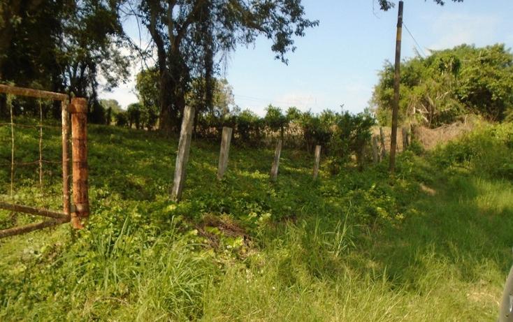 Foto de rancho en venta en  , tantoyuca, tantoyuca, veracruz de ignacio de la llave, 1861318 No. 12