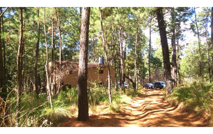 Foto de casa en venta en  , tapalpa, tapalpa, jalisco, 1410759 No. 02