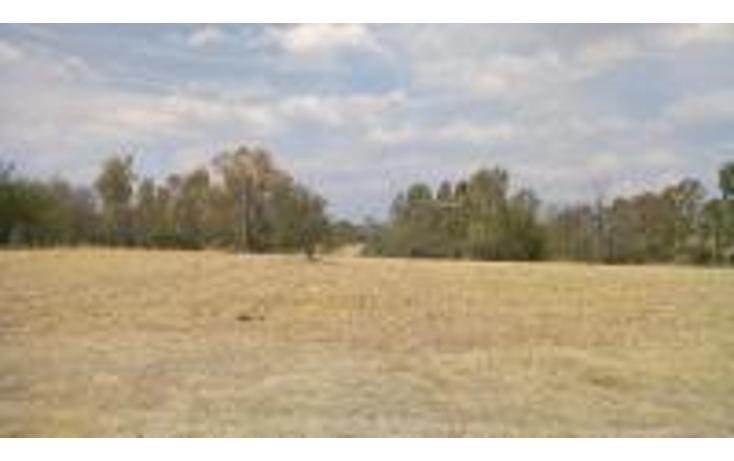 Foto de terreno comercial en venta en  , taxhie, polotitlán, méxico, 1244983 No. 03