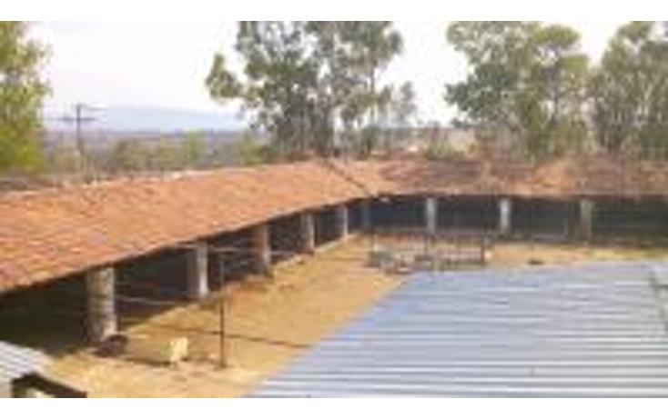 Foto de terreno comercial en venta en  , taxhie, polotitlán, méxico, 1244983 No. 05