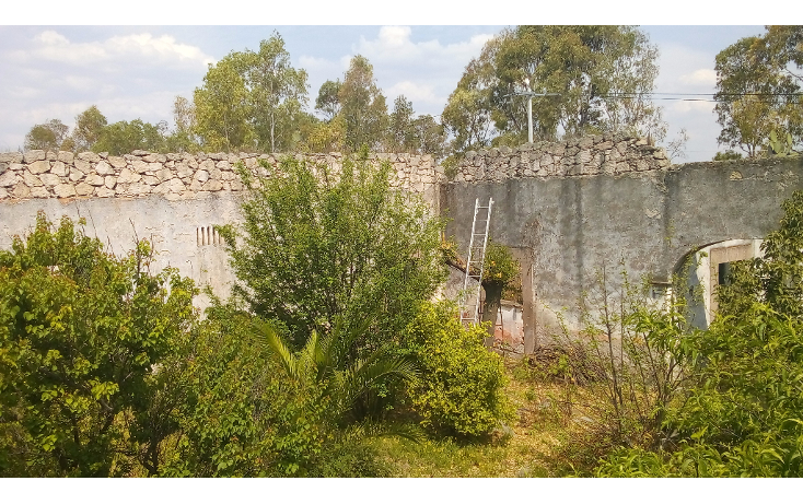 Foto de terreno comercial en venta en  , taxhie, polotitl?n, m?xico, 1804314 No. 05