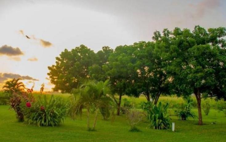 Foto de terreno comercial en venta en  , teacapan, escuinapa, sinaloa, 1263249 No. 20