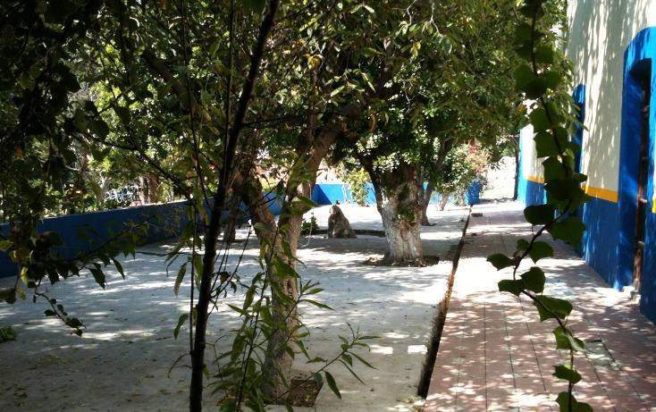 Foto de terreno comercial en venta en  , tecamachalco centro, tecamachalco, puebla, 947605 No. 05