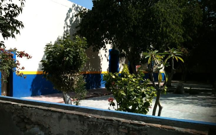 Foto de terreno comercial en venta en  , tecamachalco centro, tecamachalco, puebla, 947605 No. 06