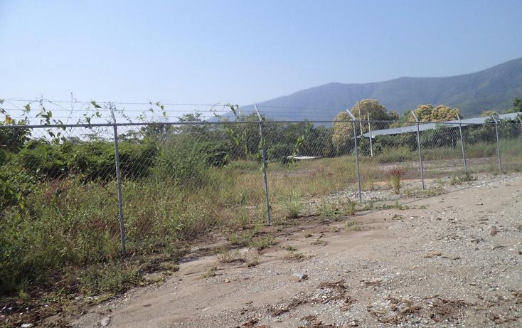 Foto de terreno industrial en venta en  , tecom?n centro, tecom?n, colima, 1297559 No. 04