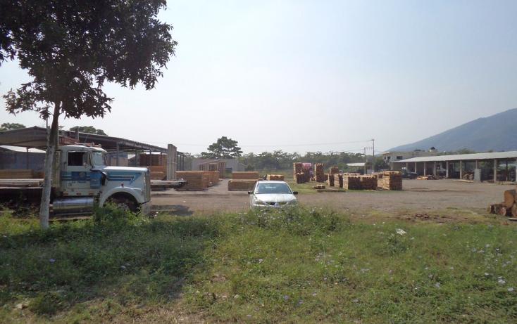 Foto de terreno industrial en venta en  , tecom?n centro, tecom?n, colima, 1297559 No. 11