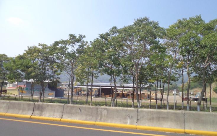 Foto de terreno industrial en venta en  , tecom?n centro, tecom?n, colima, 1297559 No. 16