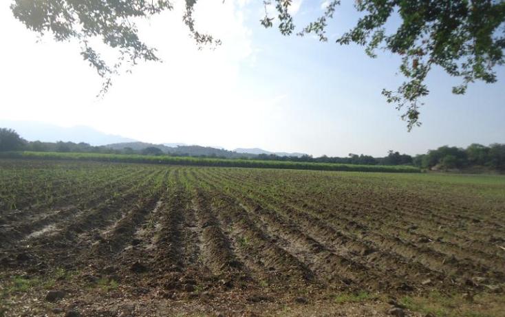 Foto de terreno comercial en venta en  , tehuixtla, jojutla, morelos, 378589 No. 05