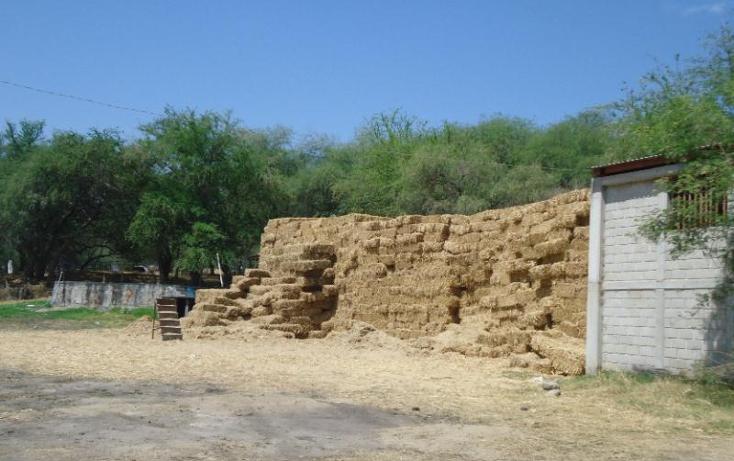 Foto de terreno comercial en venta en  , tehuixtla, jojutla, morelos, 378589 No. 06