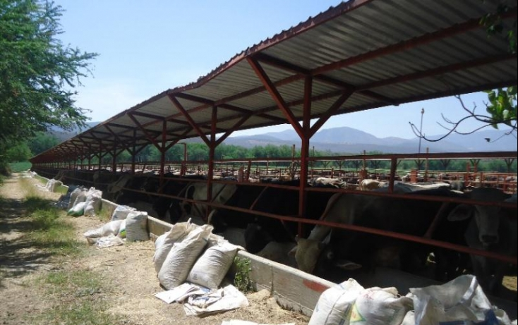 Foto de terreno comercial en venta en, tehuixtla, jojutla, morelos, 378589 no 09