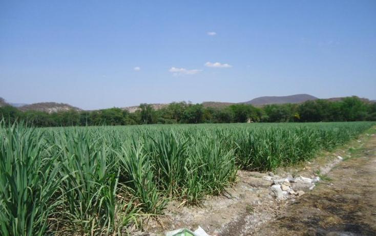 Foto de rancho en venta en  , tehuixtla, jojutla, morelos, 380399 No. 04