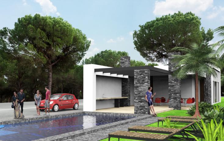 Foto de terreno habitacional en venta en  , tejeda, corregidora, querétaro, 2020241 No. 01